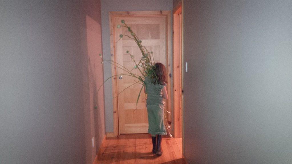 garlic being carried
